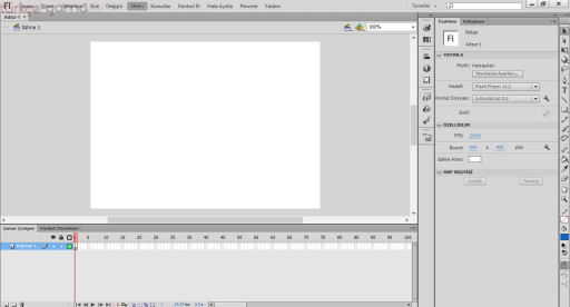 Adobe Flash Pro CS6 Türkçe